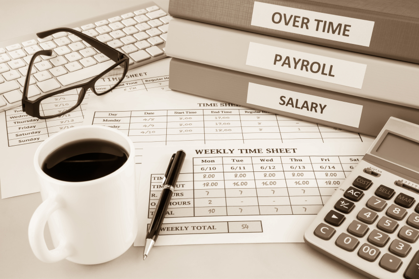 professional payroll limited services